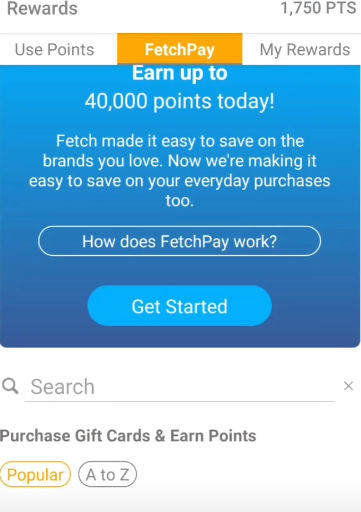 Fetch-Pay